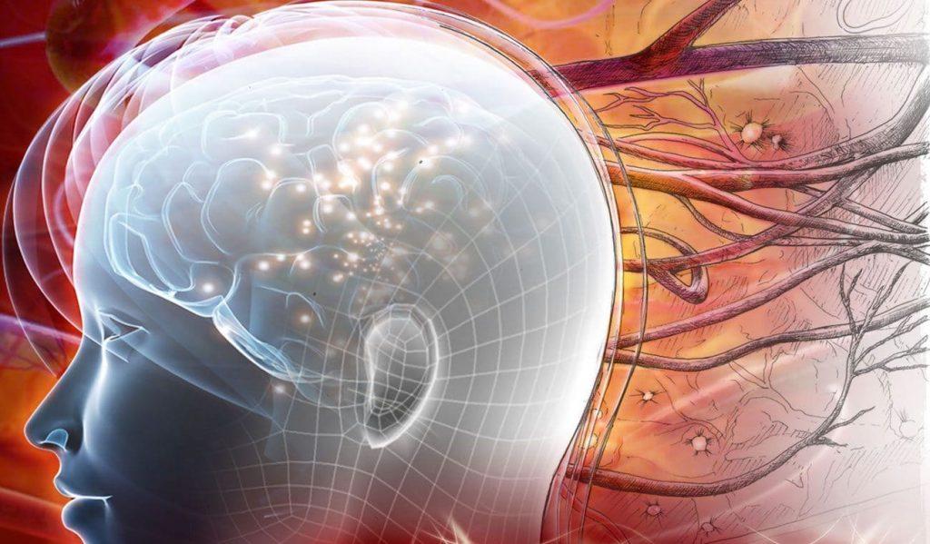 Клетачныя тэхналогіі. Галаўны мозг.