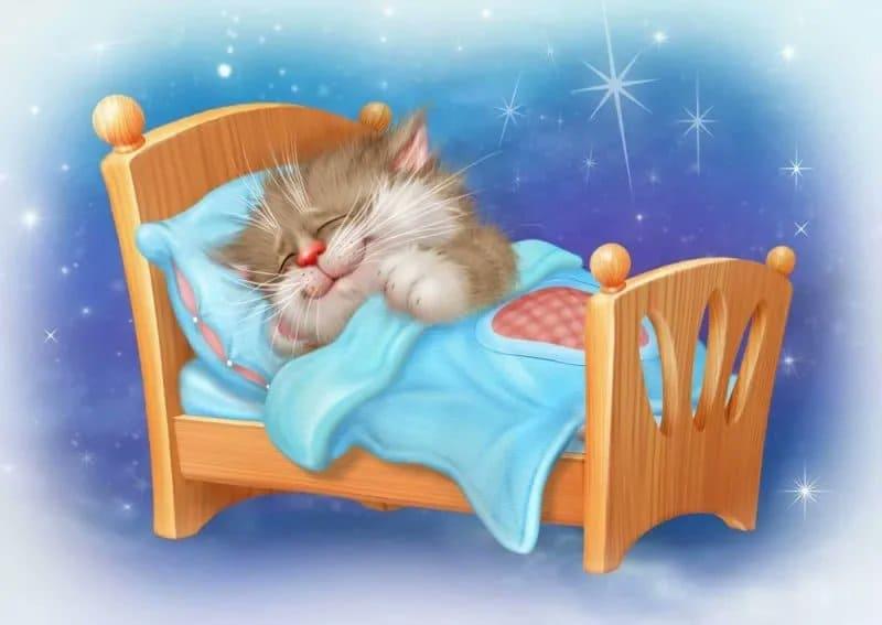 Котка Аліса і яе сын Леапольд.